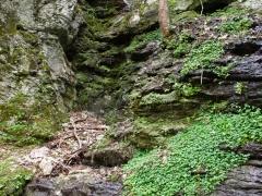 Gorges du Bruyant