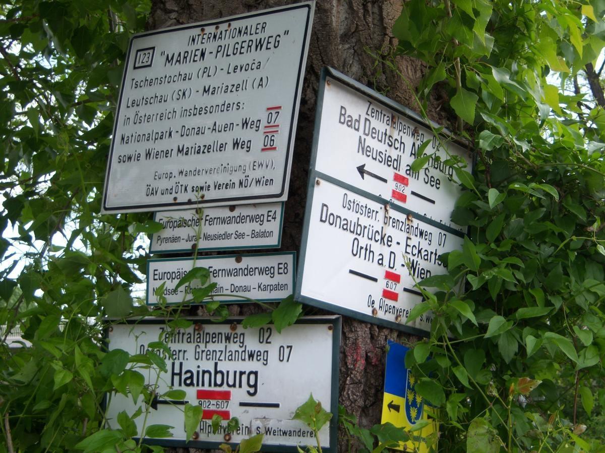 02-Hainburg-Haslau-100_1507