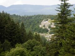 Sentier Cobert