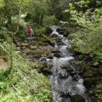 Gorges-de-Bruyant-DSC05908